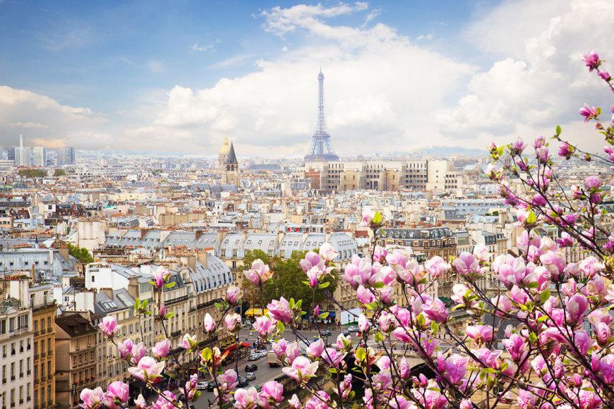 Shutterstock nuotr./Paryžius žieduose