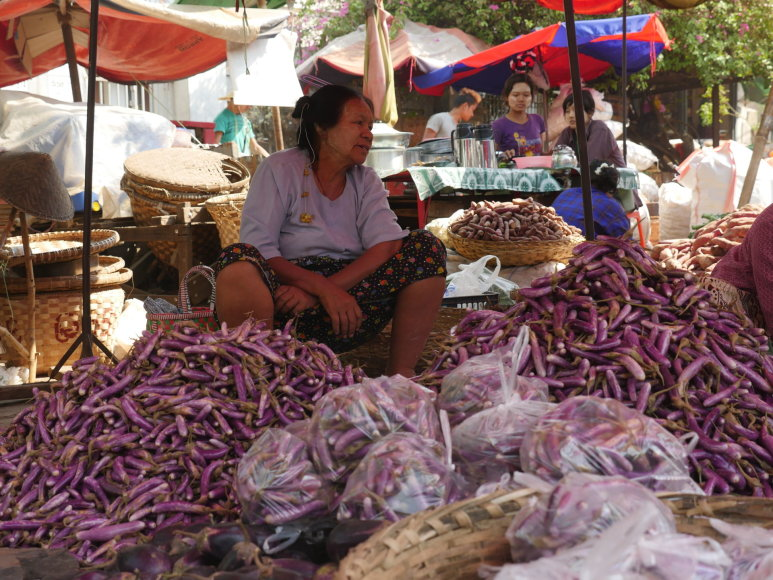 Justino Stankaus nuotr./Taunggyi turgus