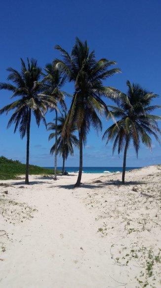 Asmeninė nuotr./Paplūdimys šalia Havanos. Uragano Irmos kaip nebūta