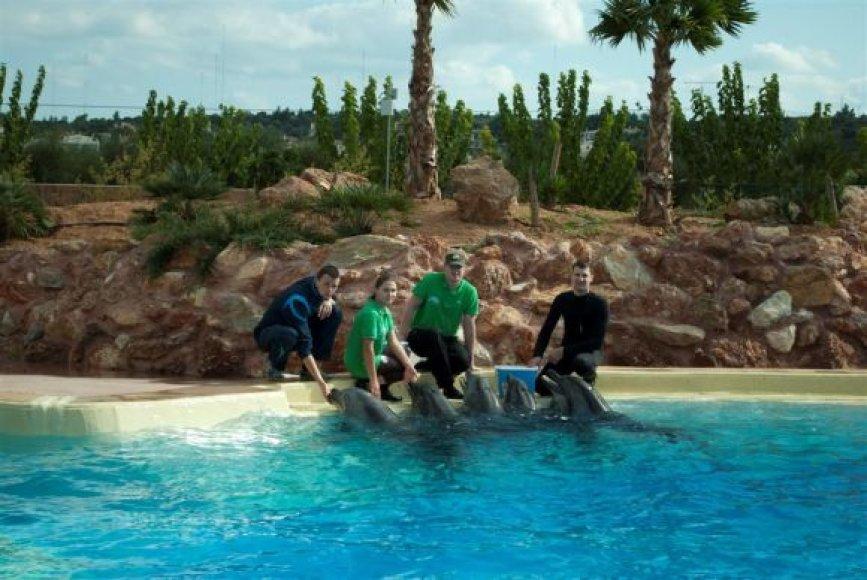 Iš Lietuvos jūrų muziejaus į Graikiją išskraidinti delfinai bando prisitaikyti prie naujų gyvenimo sąlygų.