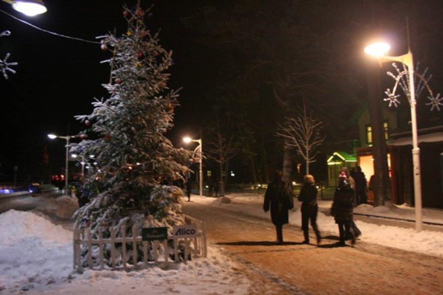 J.Basanavičiaus gatvėje įsikūrė skirtingų šalių tradicijas atspindinčios eglutės.