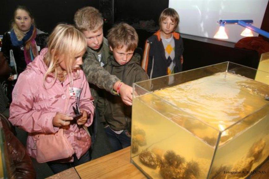 Jūrų muziejuje šeimininkavo vaikai.