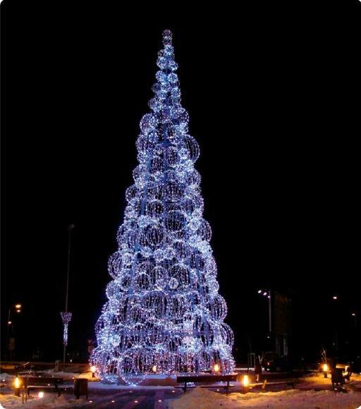 Palangoje sužibs štai tokia Kalėdų eglė, atgabenta iš Estijos