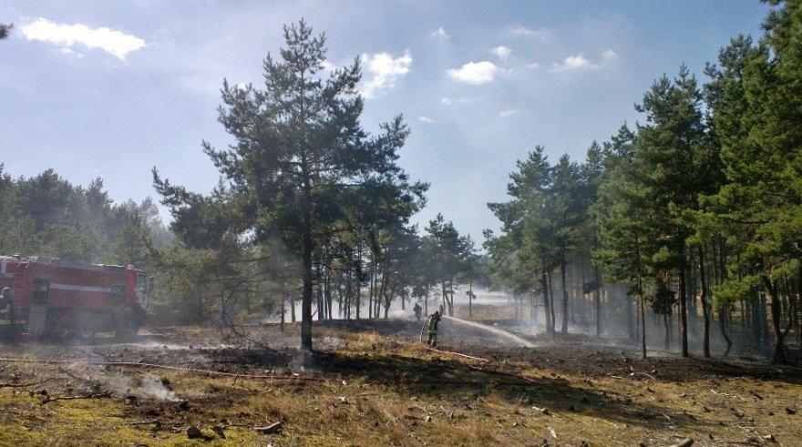 Smiltynėje pirmadienio popietę užsidegė miškas. Iš viso išdegė apie 30 arų miško paklotės.