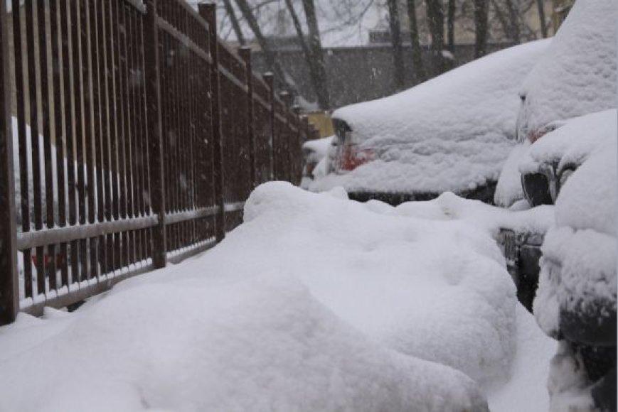 Gamta sniego pridrėbė į valias.
