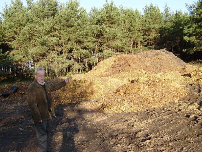 Kurorto tvarkytojai iš Palangos kasdien išveža apie 45 tonas lapų.