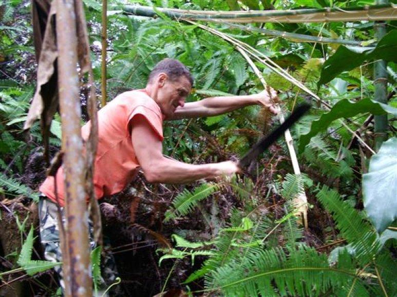 """Vicemeras S.Buškevičius, paprašytas įvardinti įspūdingiausias atostogas, net nemirktelėjęs išrėžė Malaizijos pavadinimą. Prieš 6 metus tuometinis Seimo narys dalyvavo šioje šalyje filmuotame realybės šou """"Džiunglės""""."""