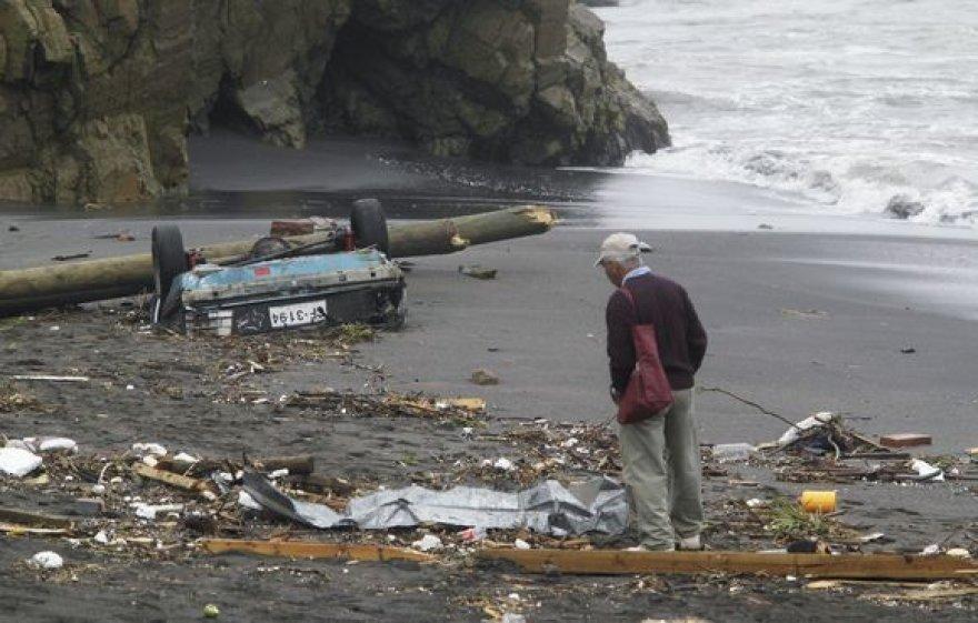 Stichijos nuniokota Čilė