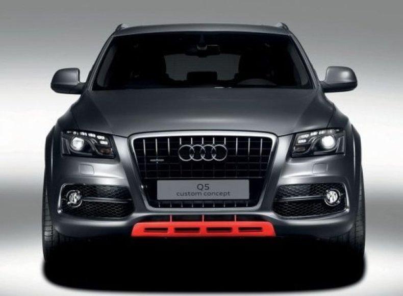"""""""Audi Q5 Custom"""""""