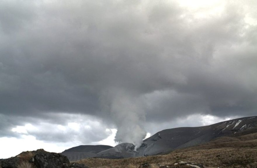 Naujojoje Zelandijoje išsiveržė unigaklnis