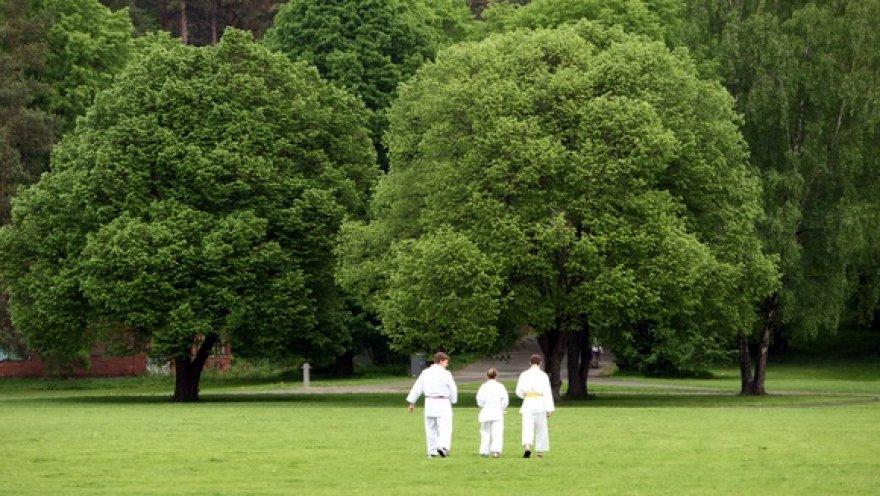 Šeštadieniais į Vingio parką kviečiami visi, norintys išmėginti bėgimą, jogą, karate, riedučius ar tiesiog pasivaikščioti.