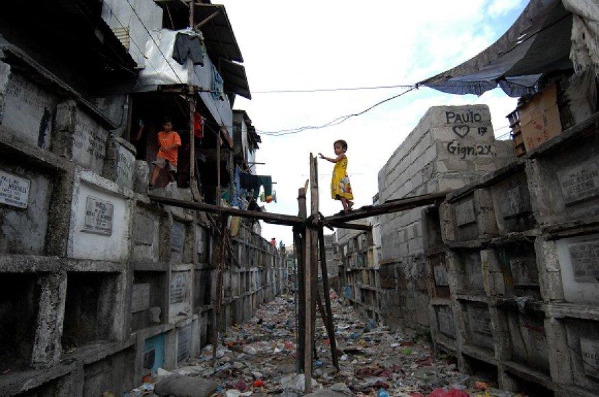 Gyvenimas Manilos kapinėse
