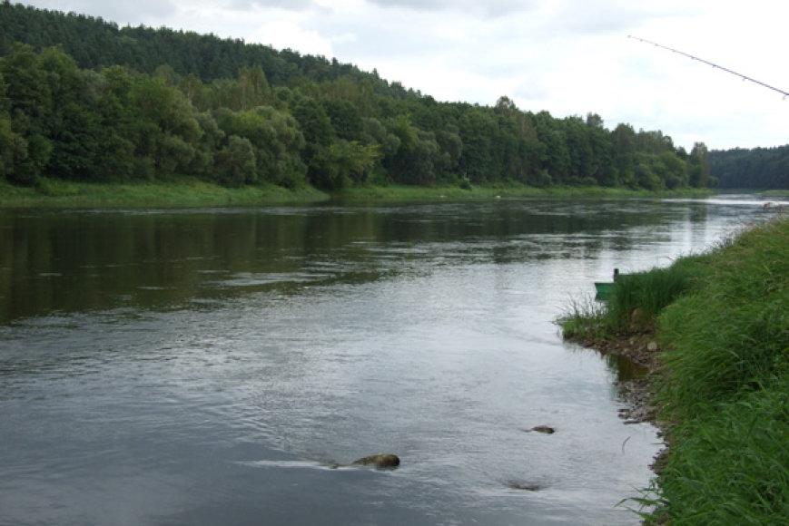 Ūsoriai laikosi upių ruožuose, kur dugnas kietas – žvirgždėtas ar molingas, o vagoje pasitaiko riedulių