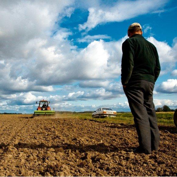 Pirmieji ekologiniai ūkiai kūrėsi Šiaurės Lietuvoje.