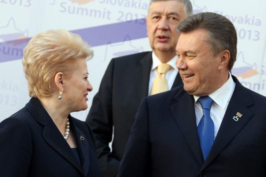 Dalia Grybauskaitė ir Ukrainos prezidentas Viktoras Janukovyčius