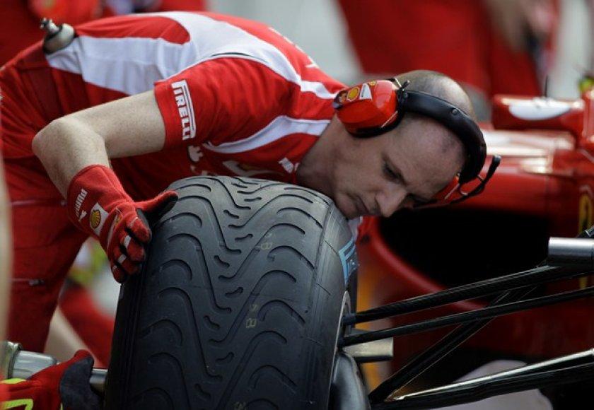 """Ferrari"" komandos narys"