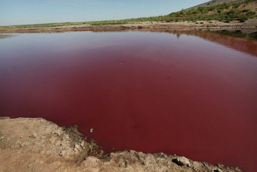Iš ežero liko tik nedidelė raudono, dumblino vandens kūdra