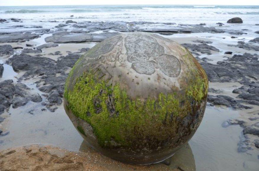Šis akmuo dūla jau 5 mln. metų