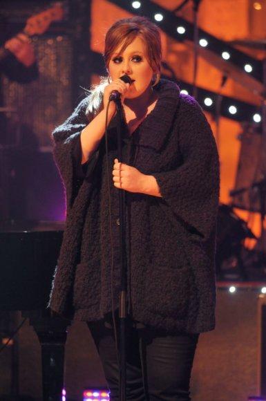 Vida Press nuotr./Adele (2008 m.)