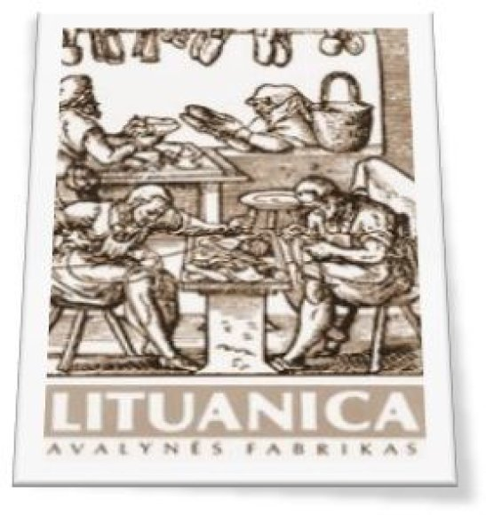 """Lituanica"" nuotr./""Lituanica"""