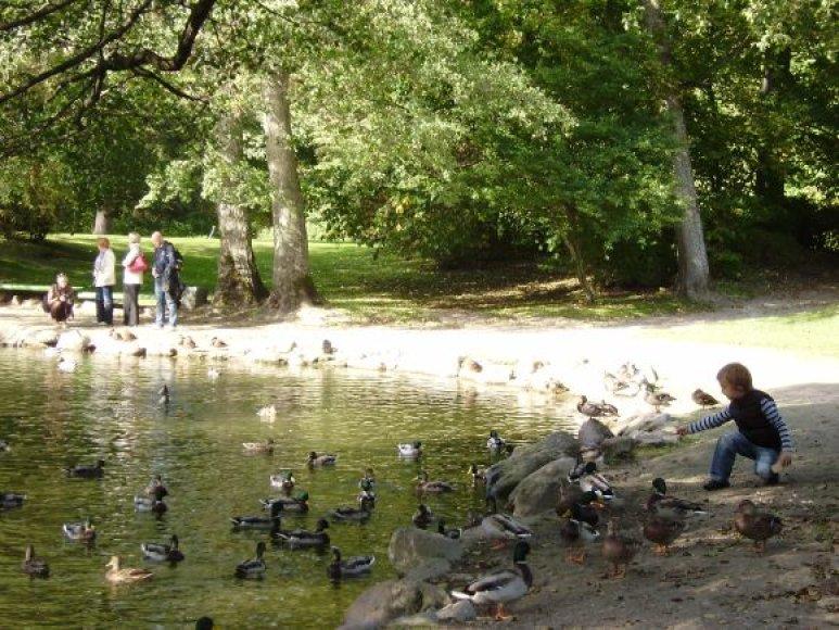 Palangiškių ir miesto svečių pamėgtas parkas atgavo istorinį vardą.