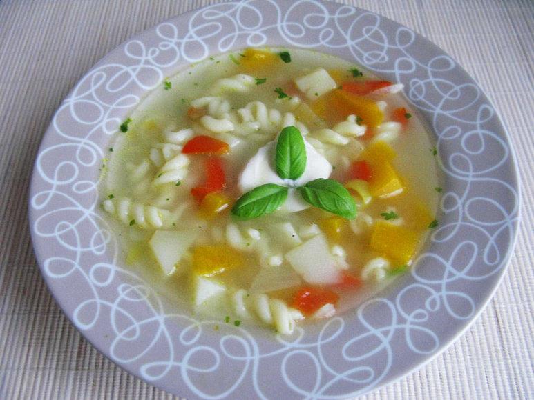 Makaronų - daržovių sriuba vištienos sultinyje