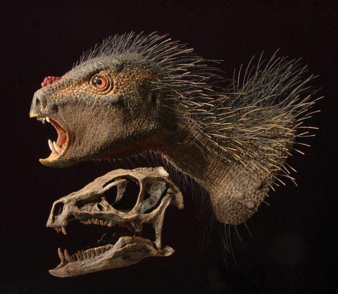 Dinozauras Pegomastax africanus