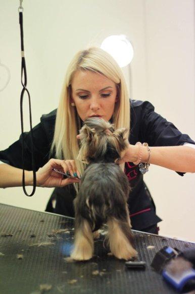 Šunų kirpėja Adelė Brazienė