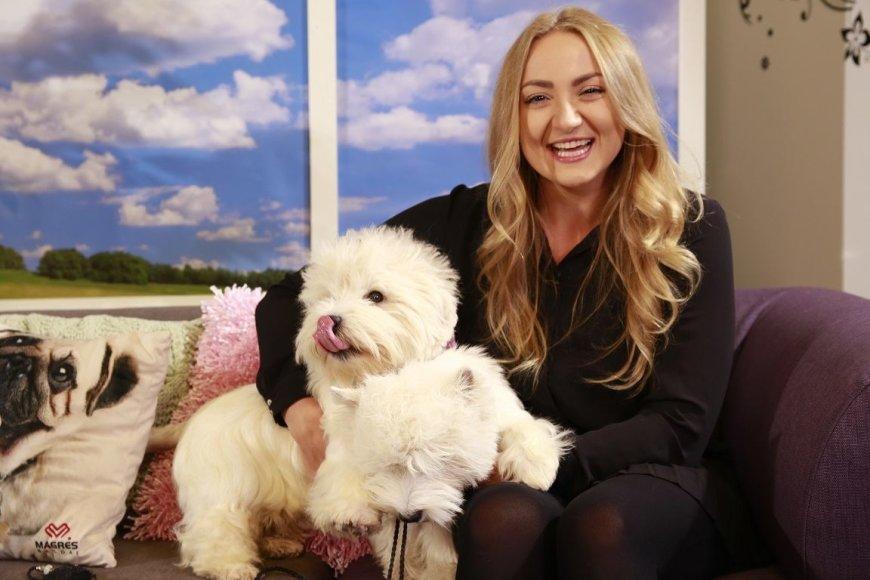 TV3 nuotr. /Vakarų Škotijos baltieji terjerai