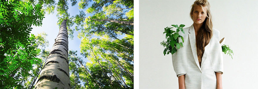 Projekto partnerio nuotr./Žaliuojantis medis / Eglė Čekanavičiūtė