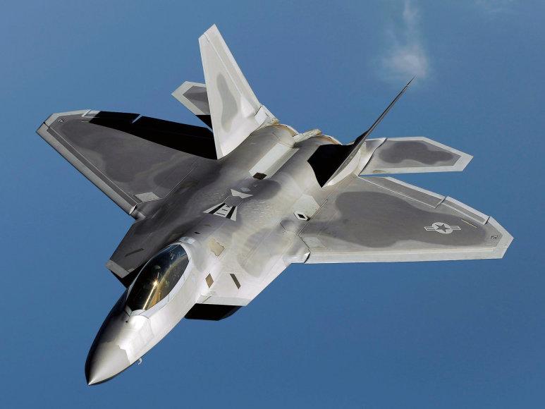 """Wikipedia"" nuotr./Naikintuvas ""F-22 Raptor"""
