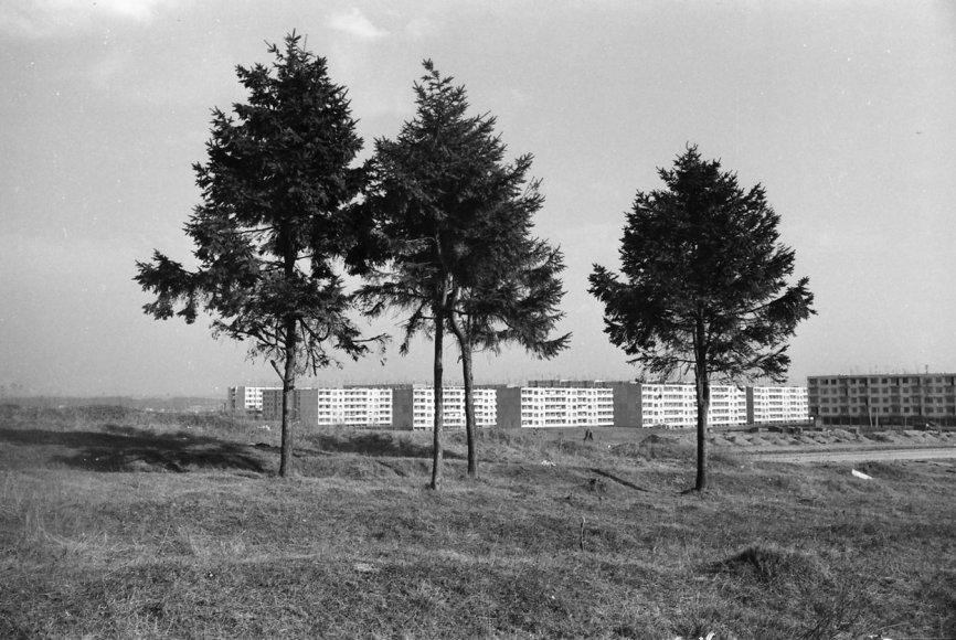 Zenono Bulgakovo nuotrauka, 1972 m., Alytaus kraštotyros muziejaus arch./Putinų mikrorajonas Alytuje,