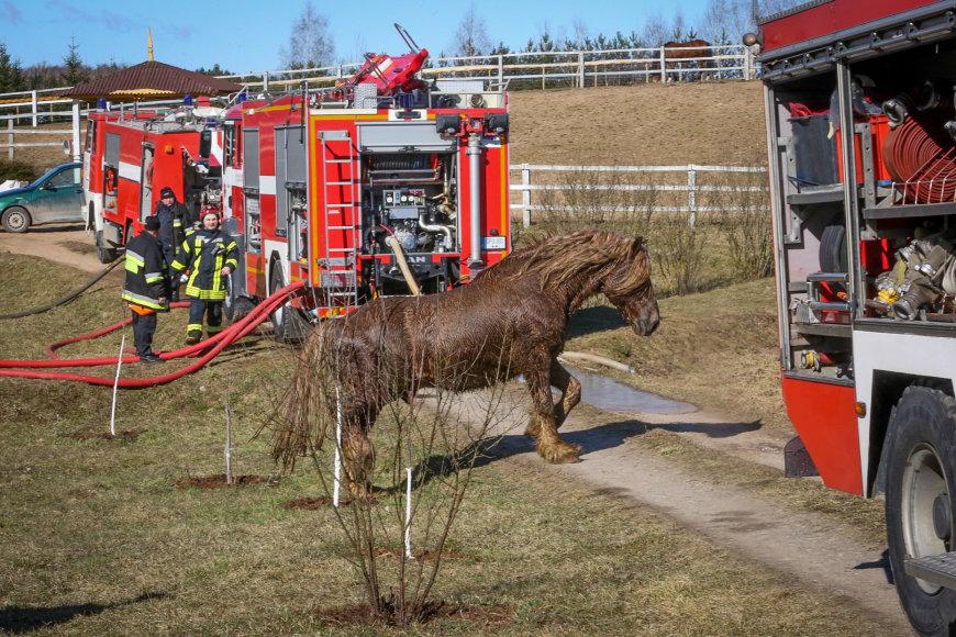 Vidmanto Balkūno / 15min nuotr./Purnuškių kaime antradienį degė Grybų dvaro arklidės.
