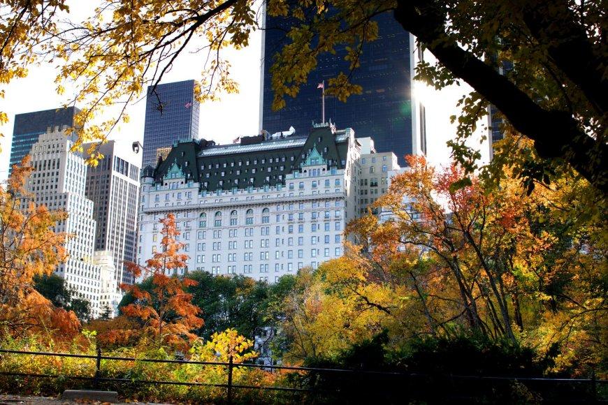 """Vida Press nuotr./""""The Plaza"""" viešbutis Niujorke"""