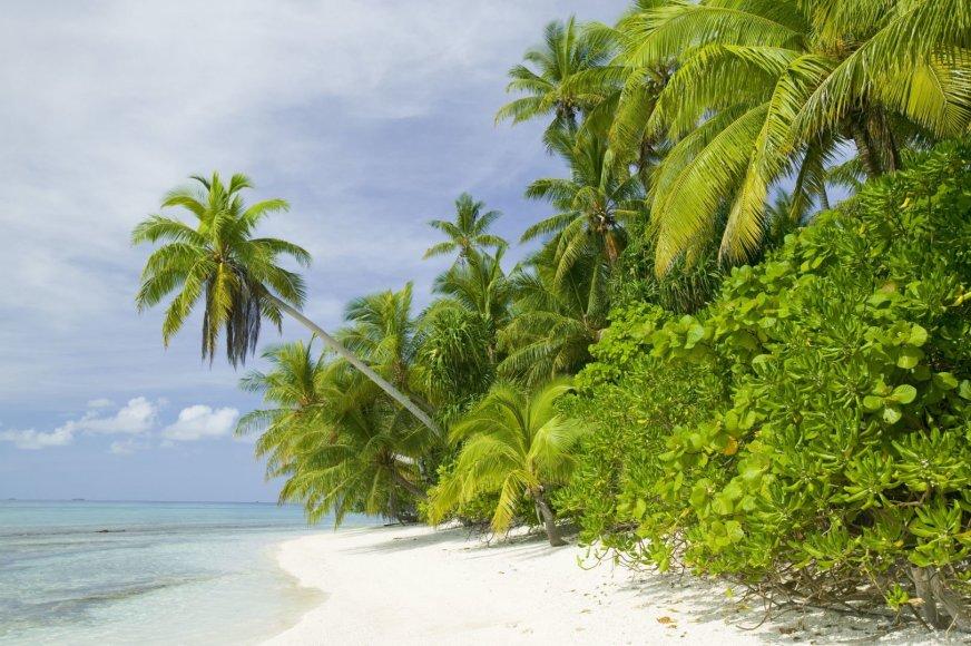 Vida Press nuotr./Tuvalu