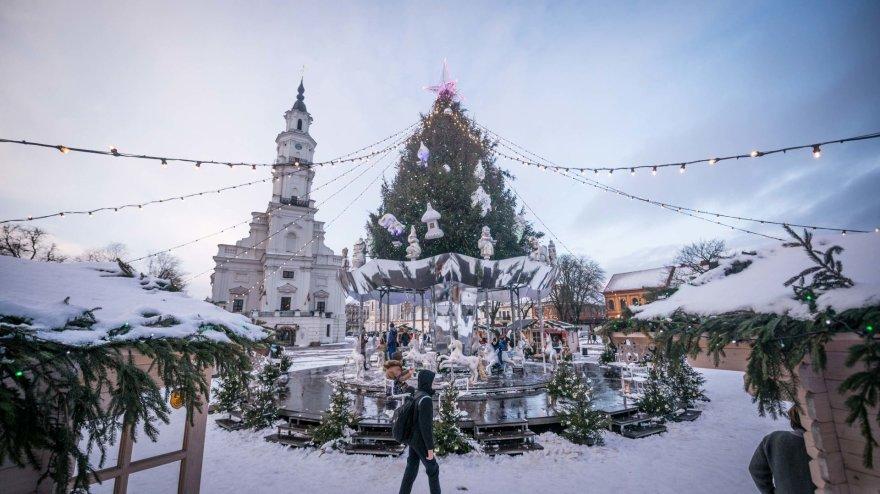 Kauno miesto savivaldybės nuotr./Kauno Kalėdų eglė