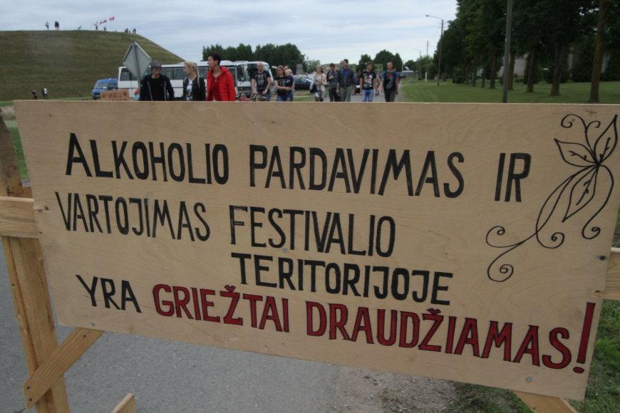 """Gintarės Januševičienės nuotr./Festivalio """"Naisių vasara"""" akimirka"""