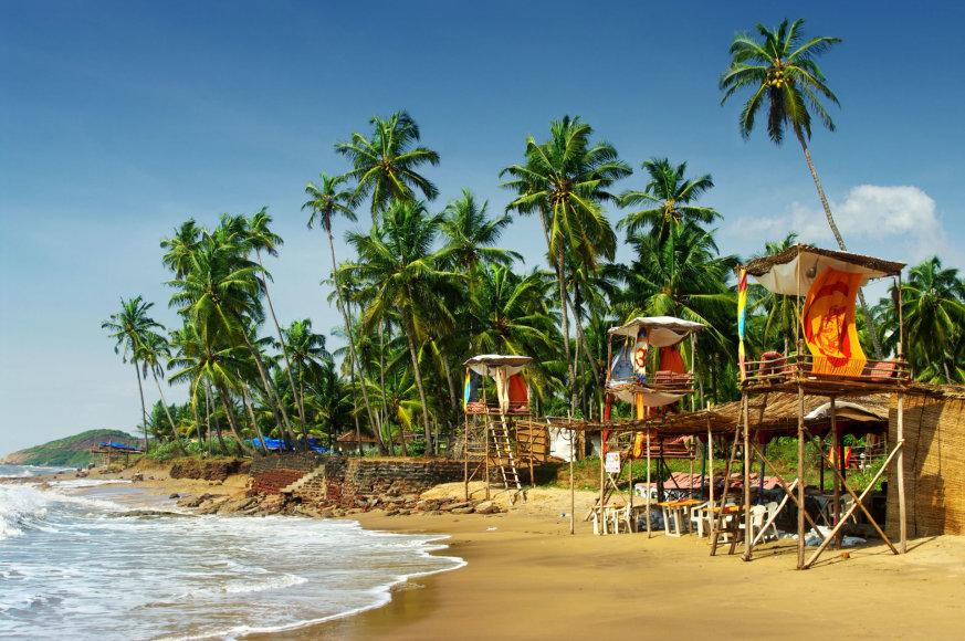 123rf.com/Hipių padovanotas turistų rojus – mažoji Indijos Goa