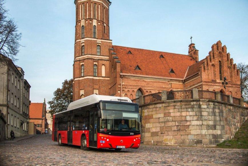 Kauno autobusas