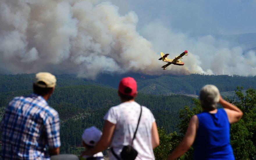 Lėktuvas virš gaisro zonos Portugalijoje