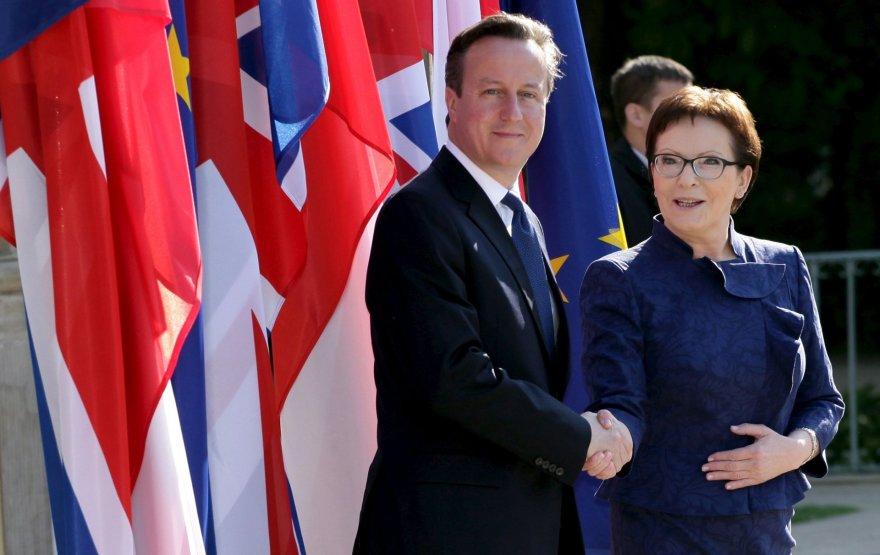 Davidas Cameronas Lenkijoje
