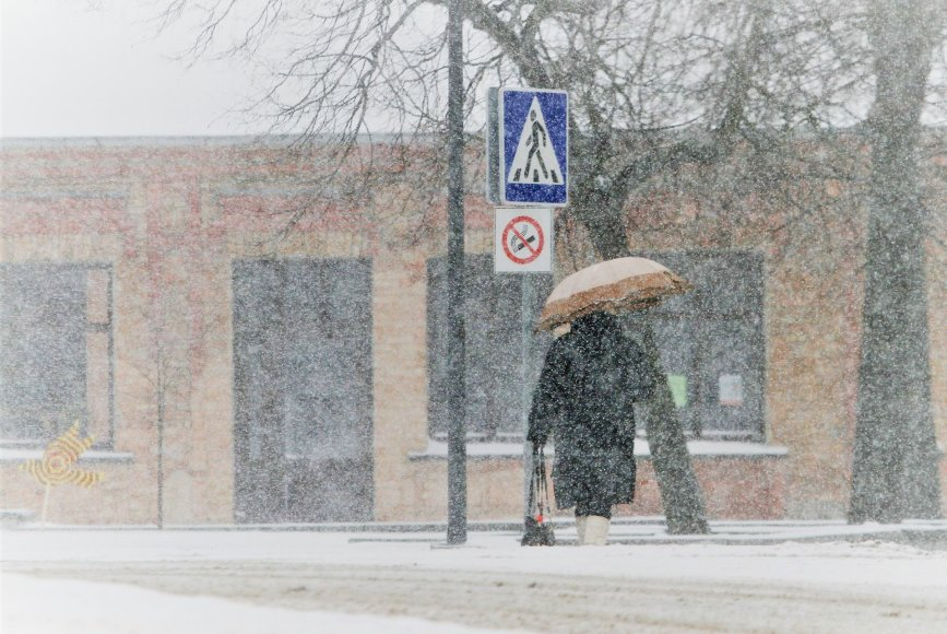 Žiema sugrįžo į šiaurinę Lietuvą