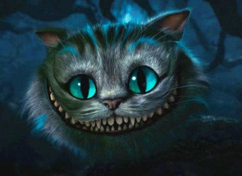 Češyro katinas