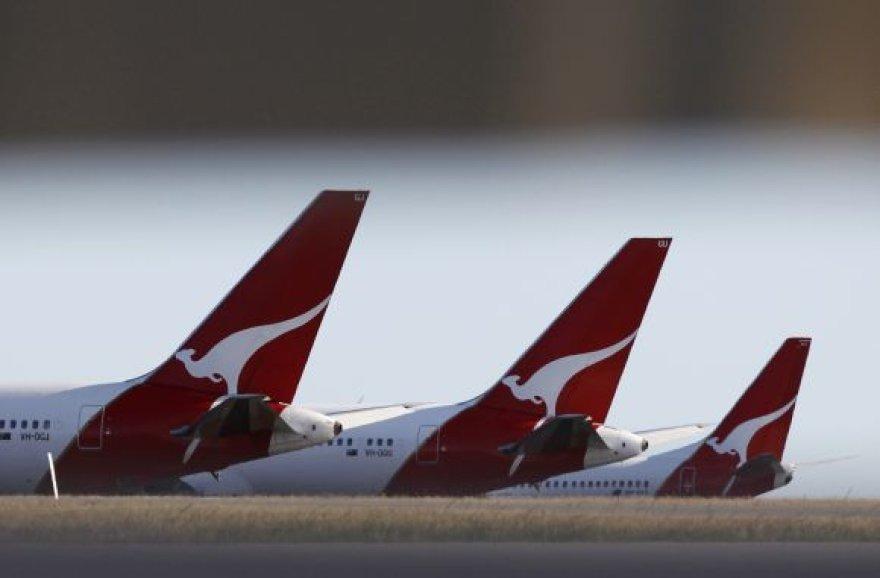 """Bendrovės """"Qantas"""" lėktuvai"""
