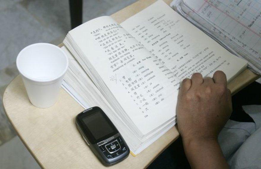 Kinų kalbos pamoka
