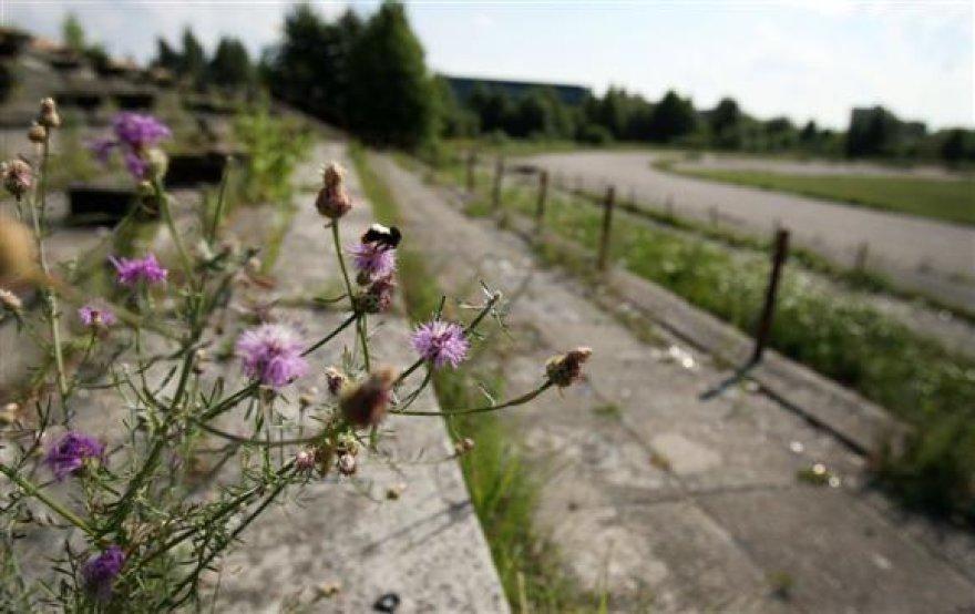 Sporto miestelį ketinama steigti didžiuliame, apleistame žemės sklype, esančiame miesto pakraštyje.