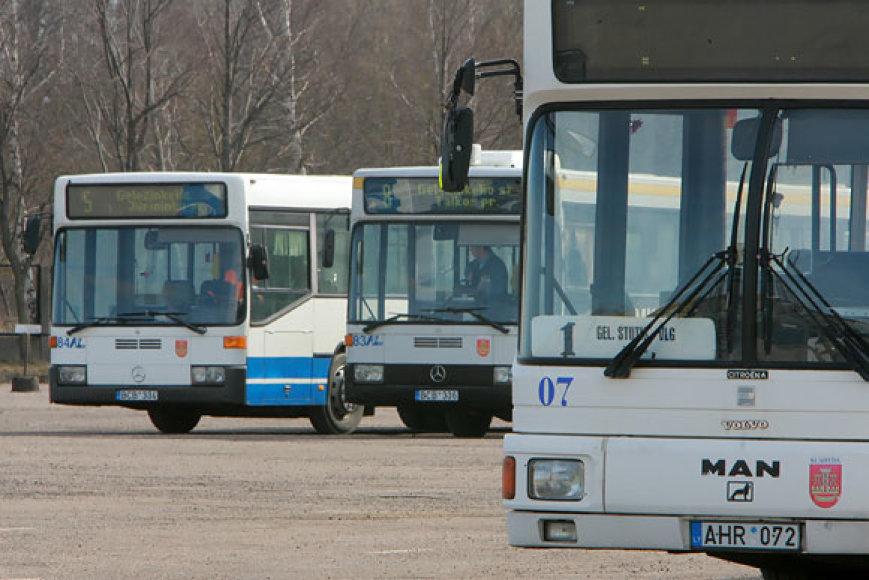 Klaipėdos autobusai