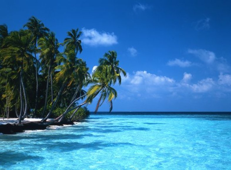 Maldyvų salos