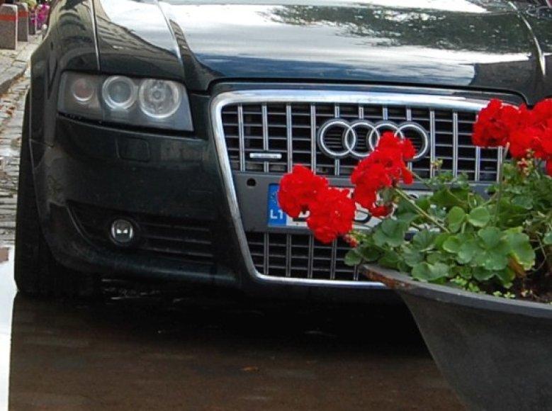 """""""Audi"""" priekis"""