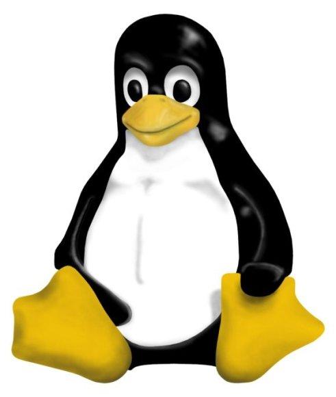 """""""Linux"""" talismanas ir logotipas – pingvinas Tux."""